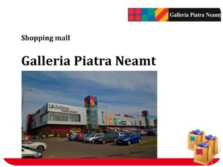 Shopping Mall Business Project